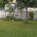 Unkempt Backyard Pools Code Violation
